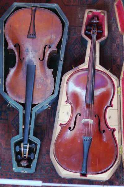 Transitional cellos
